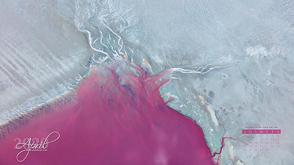 Shoreline of the Great Salt Lake